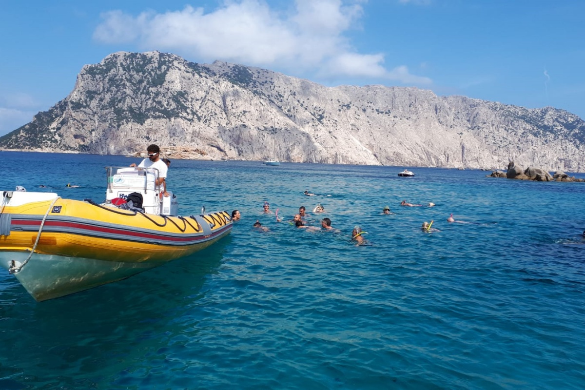 Excursion to the Protected Marine Area of Tavolara - Capo Coda Cavallo10