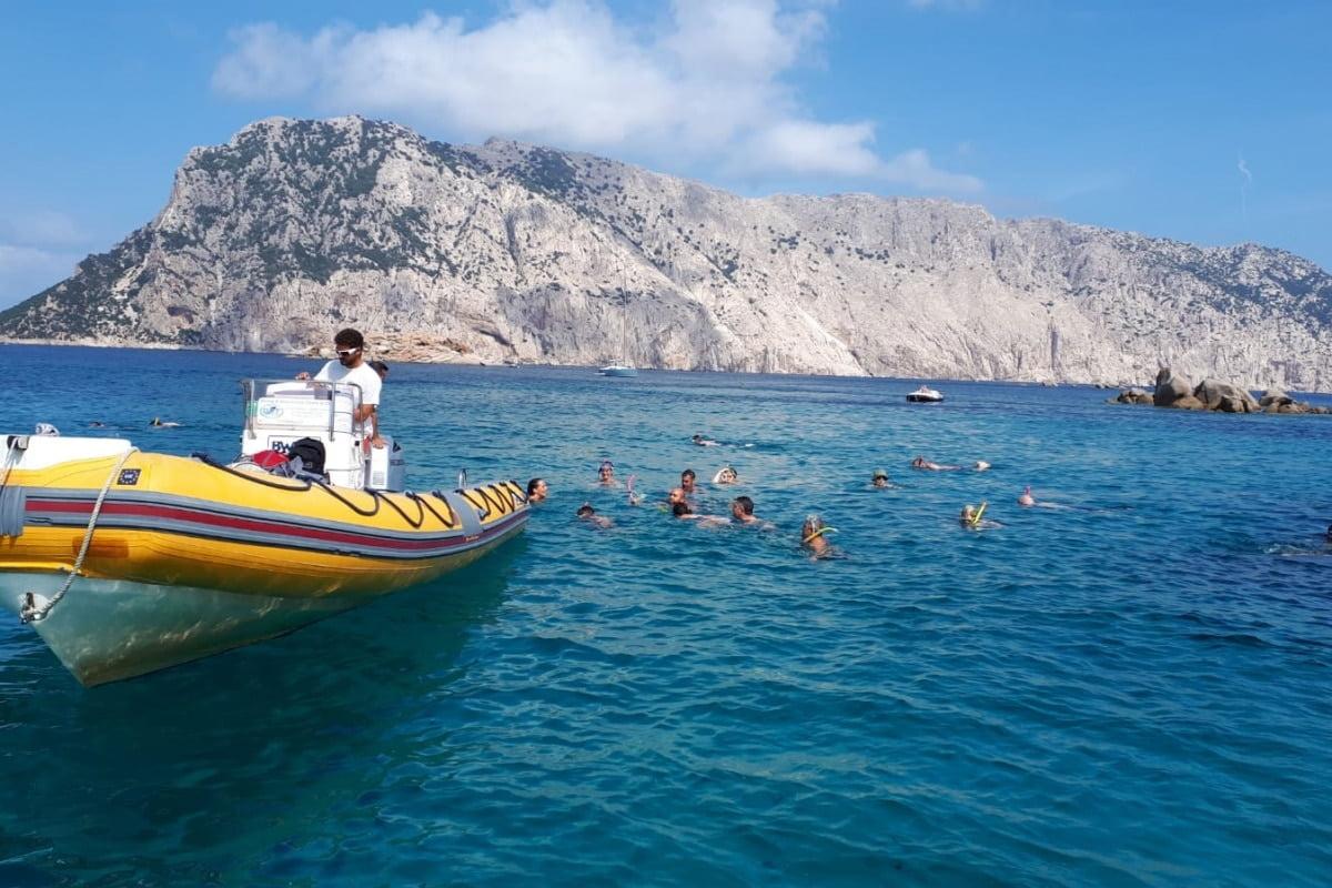 Excursion Snorkeling Marine protected area of Tavolara 4